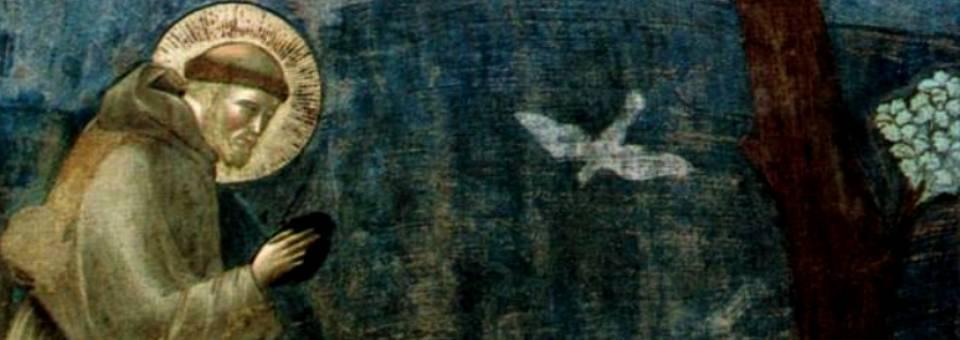 Journée-retraite : Vivre la joie de l'Evangile avec St François